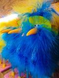 Bec jaune et poupée bleue d'oiseau de plume Photos libres de droits