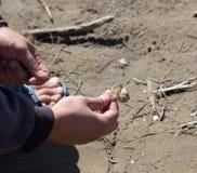 Bec sur le crochet pour les poissons contagieux Photo stock