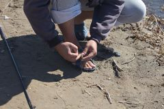 Bec sur le crochet pour les poissons contagieux Image stock