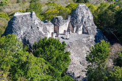 Becan Pyramid from Above. Pyramid known as structure eight as seen from above in the Mayan ruins of Becan, Mexico Royalty Free Stock Image