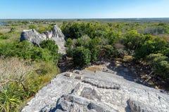 Becan Ruins and Jungle Royalty Free Stock Photos