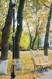 Bech en bois avec les décorations métalliques restant près du réverbère intéressant en parc d'automne Photo stock