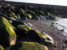 Bech and stone near the ocean Stock Photography