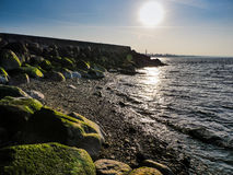 Bech and stone near the ocean. Bech and stone near the Baltic sea Stock Photos