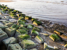 Bech and stone near the ocean. Bech and stone near the Baltic sea Royalty Free Stock Images