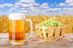 Becher Bier gegen Feld Lizenzfreie Stockfotografie
