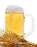 Becher Bier und Weizen Stockfoto