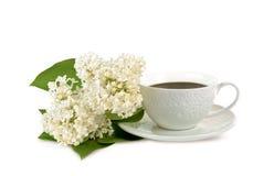 Becher Kaffee und weiße Blumen Stockfotos
