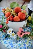 Becher mit frischen Beeren Stockbild
