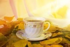 Becher Tee morgens für Herbstlaub Stockfoto