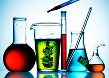 Bechers et liquides en verre de laboratoire Photos stock