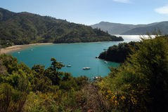 Beck's Bay Queen Charlotte Sound Stock Image