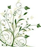 beckground花卉向量 免版税库存照片