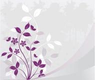beckground花卉向量 库存照片