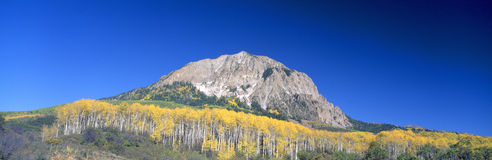 Beckwith Mountain at Kebler Pass Stock Images