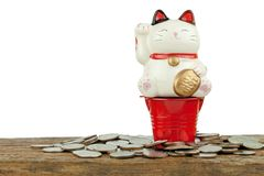 Becky cat statue. On bucket zinc mini Royalty Free Stock Photo