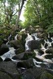 becky falls Fotografia Stock
