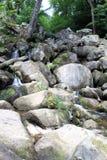 Becky Falls In Dartmoor Royalty-vrije Stock Foto's