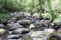 Becky Falls In Dartmoor Royalty-vrije Stock Fotografie