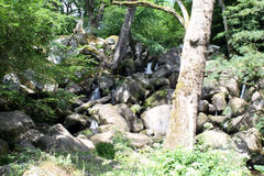 Becky Falls In Dartmoor Stock Images
