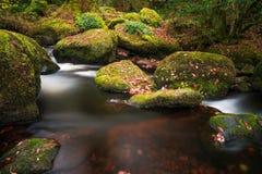 Becky Falls nel parco nazionale di Dartmoor immagini stock libere da diritti