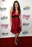 Becky Johnston at the FOX Reality Channel Really Awards 2007. Boulevard3, Hollywood, CA. 10-02-07 Stock Photo