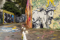 Beco fa Batman a Sao Paulo, Brasile Immagine Stock Libera da Diritti