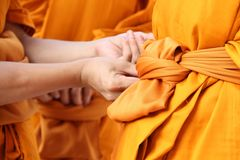 Become a monk Royalty Free Stock Image