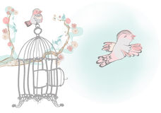 Becoming free. A bird flying from open cage.it's free.Other sitting on blooming brunch on background Royalty Free Stock Image