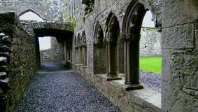 Bective Abbey, Ireland Royalty Free Stock Photography