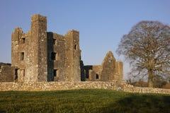 bective abbey klippning ståndsmässiga Meath ireland Fotografering för Bildbyråer