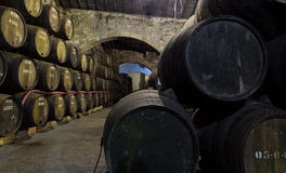 beczki portowy Porto Portugal magazyn Fotografia Royalty Free