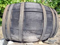 Beczki wino Obraz Royalty Free