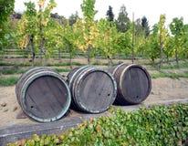 Beczki wino Fotografia Royalty Free
