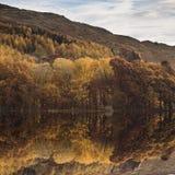 Bedöva Autumn Fall landskapbild av bred bygd i sjön arkivbild