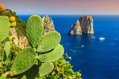 Bedöva den Capri ön med Faraglioni klippor, Italien, Europa royaltyfri foto