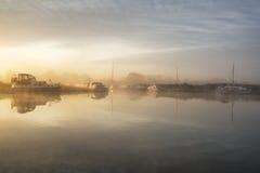 Bedöva dimmig sommarsoluppgång över fridsamt flodlandskap i E Royaltyfri Bild