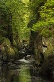 Bedöva eteriskt landskap av den djupa sidklyftan med vagga väggar royaltyfria foton