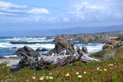 bedöva för seascape Fotografering för Bildbyråer