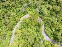 Bedöva flyg- surrsikt av en blåsig väg sänd 12 som leder till och med Waipoua Kauriskog Royaltyfria Foton