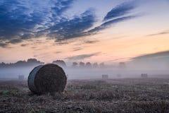 Bedöva gryning på den dimmiga dalen i höst Royaltyfri Fotografi