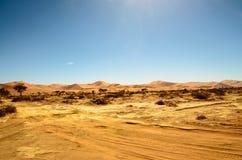 Bedöva naturlig skönhet av öknen i Namibia Royaltyfria Bilder