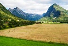 Bedöva norskt landskap royaltyfri foto