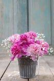 Bedöva rosa pioner i silverhink royaltyfri foto
