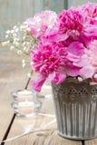 Bedöva rosa pioner i silverhink arkivfoton