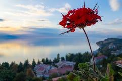 Bedöva sikt på sjön Ohrid, Makedonien arkivbild