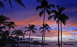 bedöva solnedgång för hawaiansk koolinasemesterort royaltyfria bilder