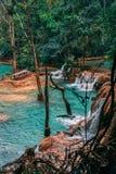Bedöva Tad Sae Waterfall utanför Luang Prabang Gömd ädelsten i Laos Inte populärt och mindre fullsatt Mer bekant vid lokalt folk royaltyfria bilder
