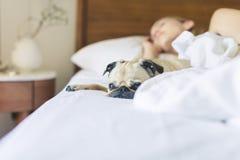 Bed, Bedroom, Blanket Stock Photos