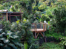 Bed and Breakfast place hidden in the Hawaii jungle Royalty Free Stock Photography